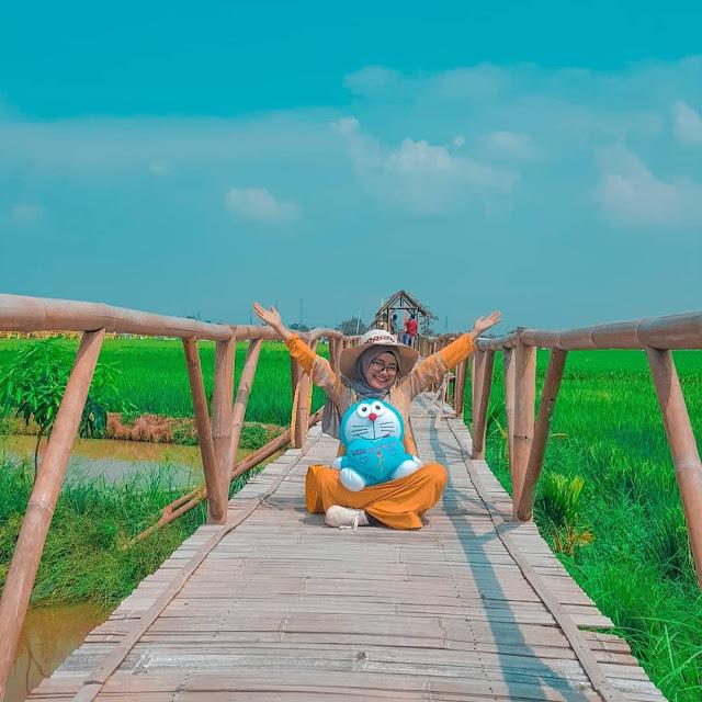 Kampung Wisata Sawah Pematang Johar