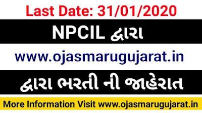 NPCIL Recruitment 2020, NPCIL Job Bharti 2020, Gujarat Job Bharti 2020, Ojas Maru Gujarat, Maru Gujarat Bharti 2020,