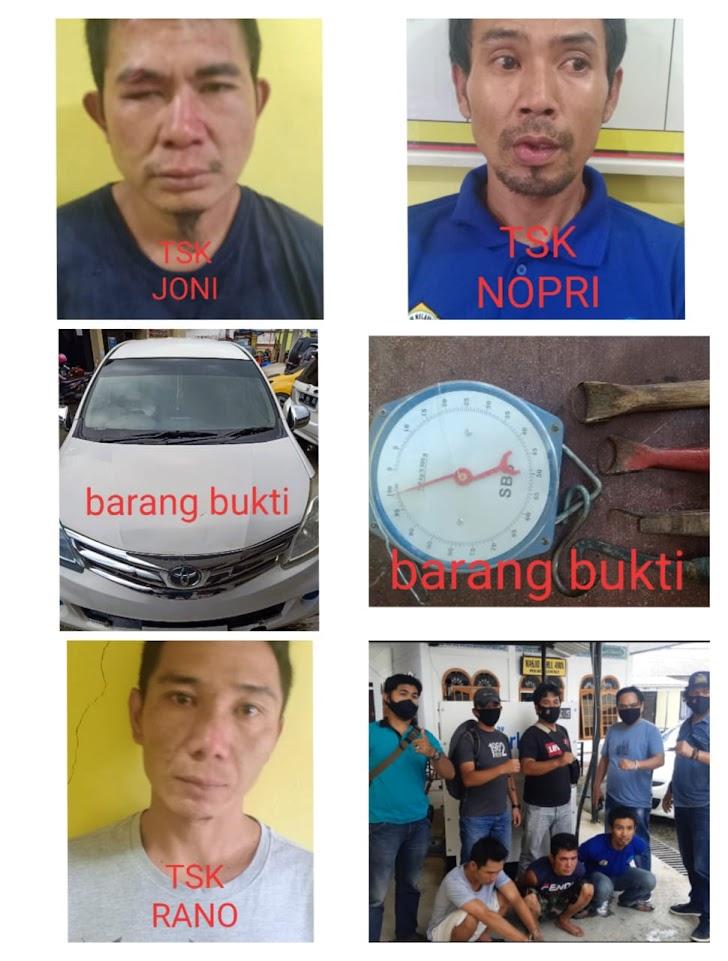 Tiga Pelaku Pencurian Kulit Manis Diringkus Polisi