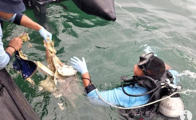Pasukan Katak Temukan Banyaknya Serpihan Tubuh Manusia di Bawah Laut