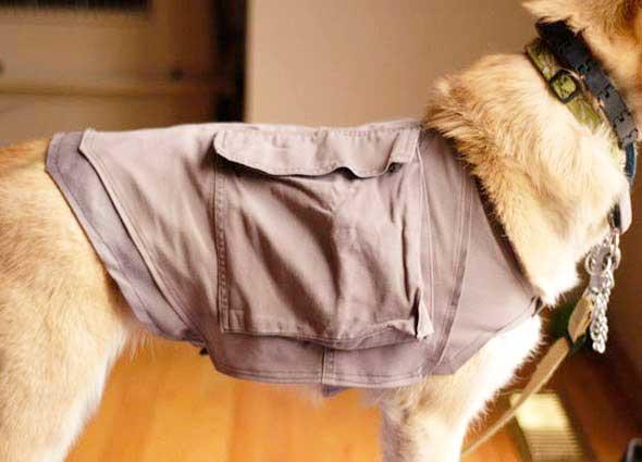 chaleco multiusos mascotas, chaquetas bolsillos mascotas con pantalones,