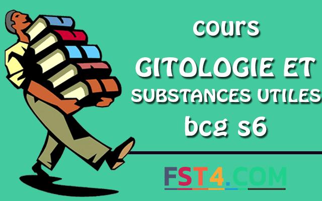 COURS DE GITOLOGIE ET SUBSTANCES UTILES BCG S6 PDF