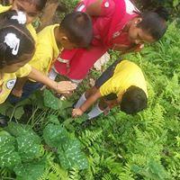 Mount Zion School Gangtok Sikkim