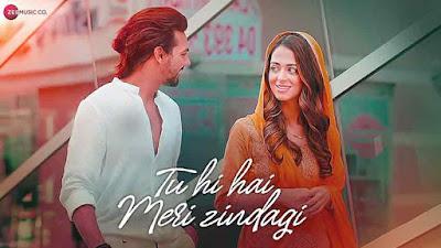 Tu Hi Hai Meri Zindagi Song lyrics - Nikhil D'Souza