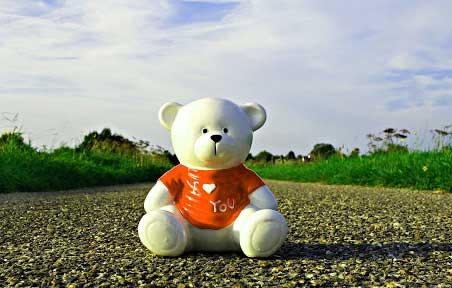 Teddy%2BBear%2BImages%2BPics%2BHD7