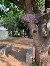 Κήποι Αλιάρτου: Μια νεανική ελπιδοφόρα περιβαλλοντική πρωτοβουλία