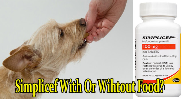 simplicef-for-dogs-with-or-without-food