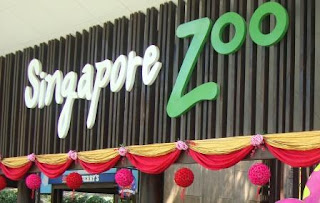 Vacation in Singapore