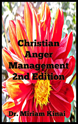 Christian anger management book