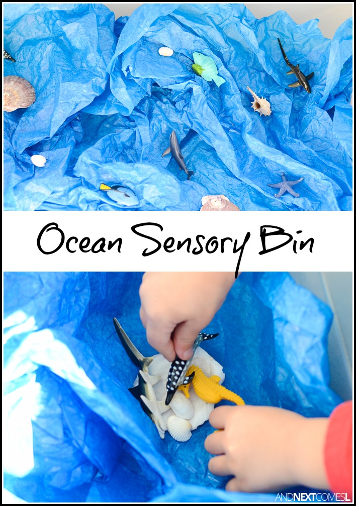 Ocean Sensory Bin And Next Comes L