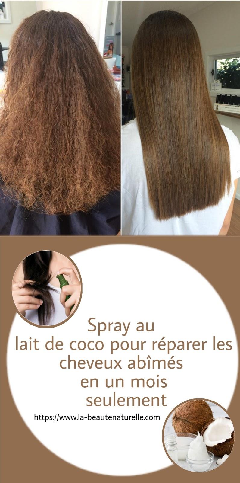 Spray au lait de coco pour réparer les cheveux abîmés en un mois seulement