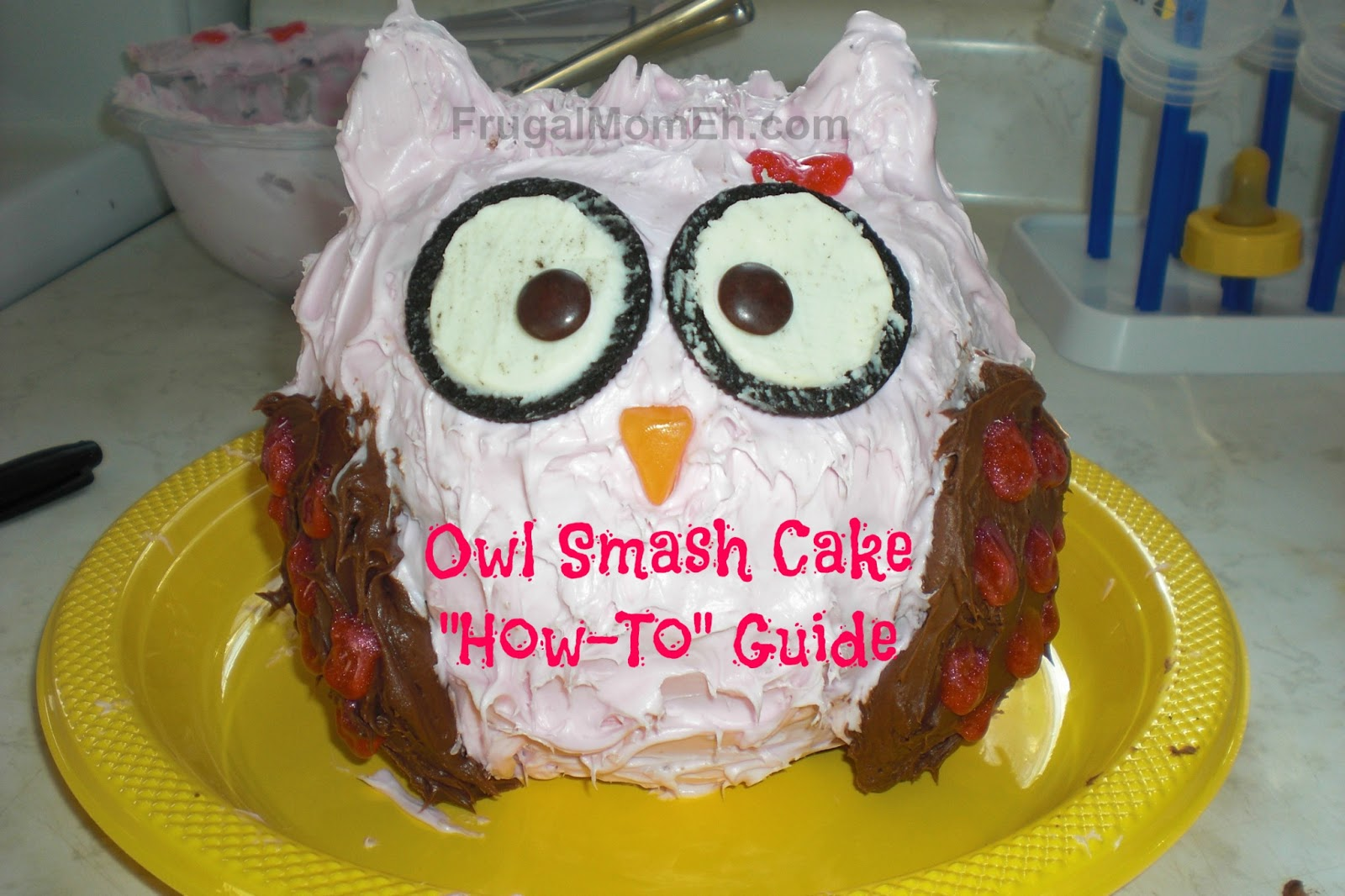Owl Smash Cake How To Guide