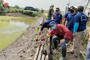 Peduli Lingkungan, IMANU, HIPMI dan HNSI Kabupaten Tangerang Tanam Mangrove di Lontar