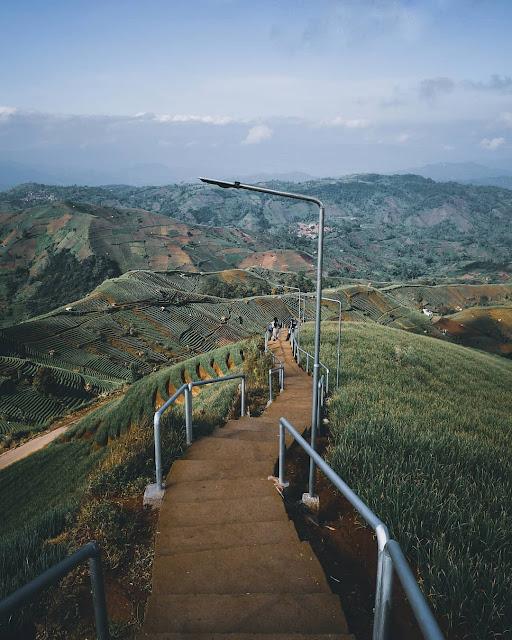 Jalan Menuju Terasering Panyaweuyan