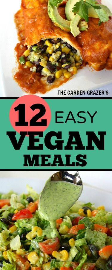 12 of the BEST easy, satisfying vegan meals! Loved by kids & adults alike, both vegan and non-vegan. Great healthy, plant-based options for weeknights!