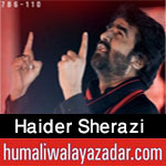 https://www.humaliwalayazadar.com/2012/11/haider-sherazi-nohay-2011-203.html