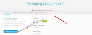 Freenom manage DNS