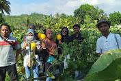 Petani Inspiratif Asal Desa Batu Putih Sekotong Dengan Segudang Prestasi