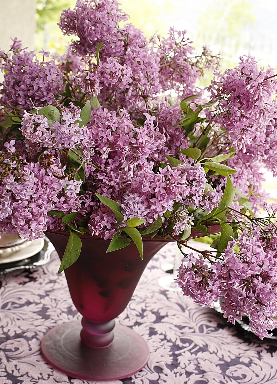 Pretty In Purple My Love For Lilacs Table Purple