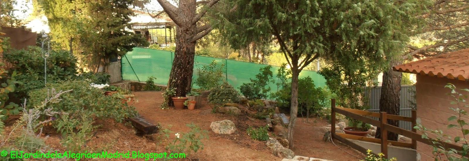 El jard n de la alegr a c mo instalar una valla met lica en el jard n y poner malla de ocultaci n - Valla metalica jardin ...