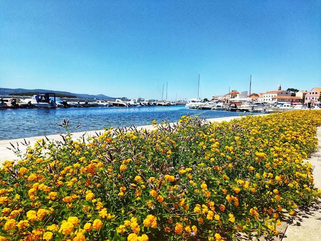Chorwacja, Biograd Na Moru, port, lato
