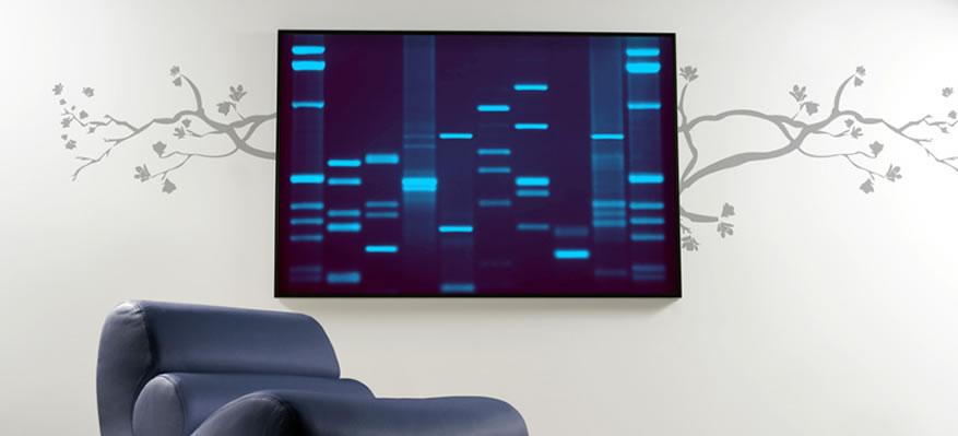 population genetics | Lost in Transcription