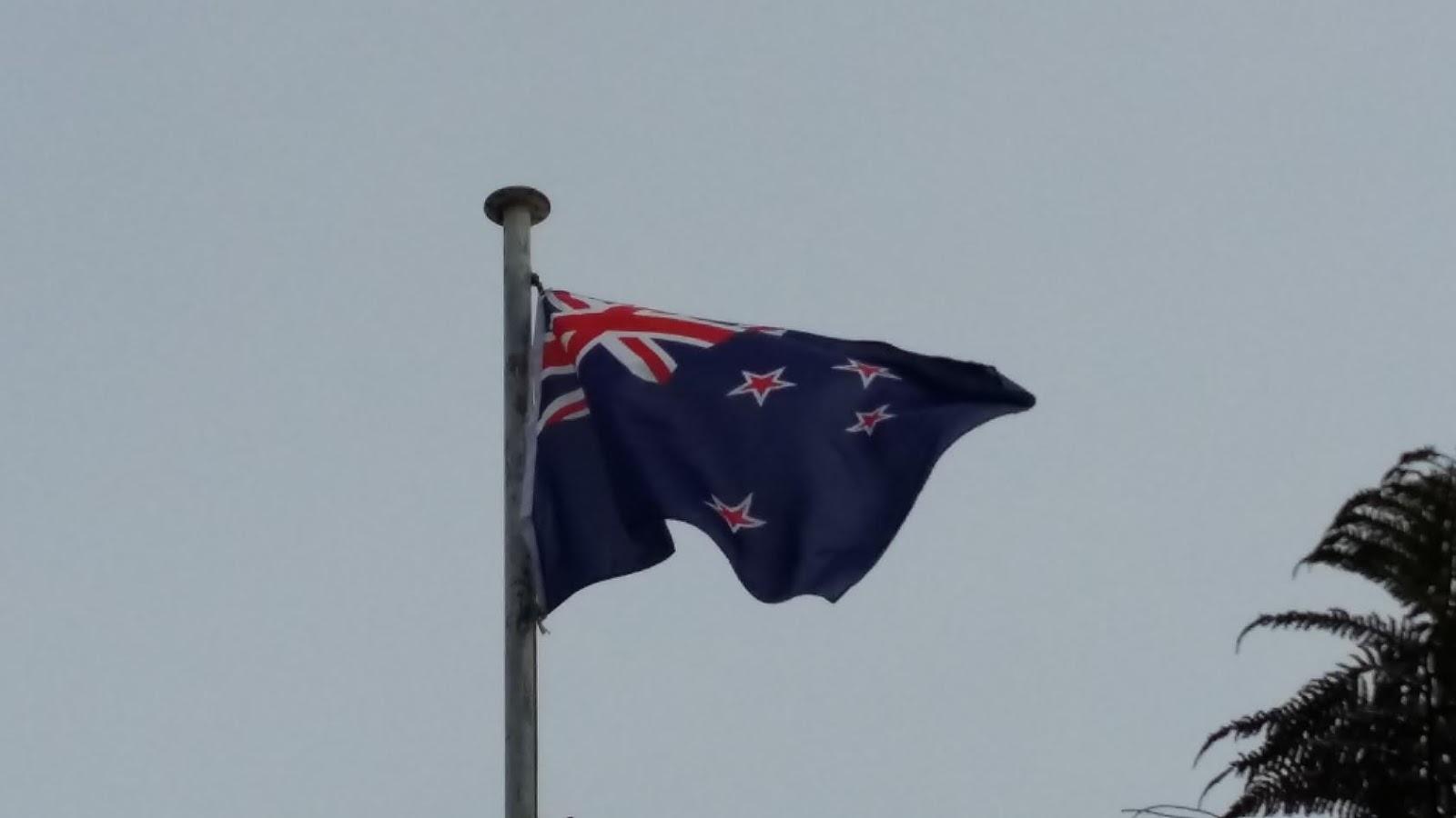 koukku nyt NZ