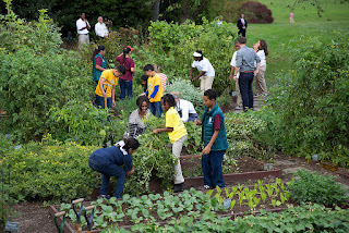 The meaning of organic gardening