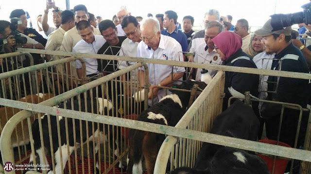 Pusat Penyelidikan dan Inovasi Lembu Muadzam Shah, MSCRIC, Najib Razak,