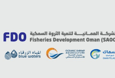 للعمل الشركة العمانية لتنمية الثروة السمكية FDO – وظائف شاغرة