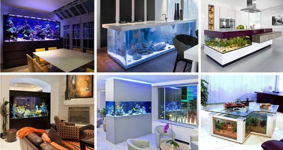 20 Best Aquarium Fish Ideas Integrate Interior House Designs ...