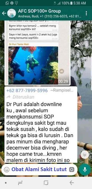 Agen Jual: SOP 100 Salmon Ovary Peptide, SOP Subarashi Japan dan Beda SOP 100 dan Utsukushii, di Ambon