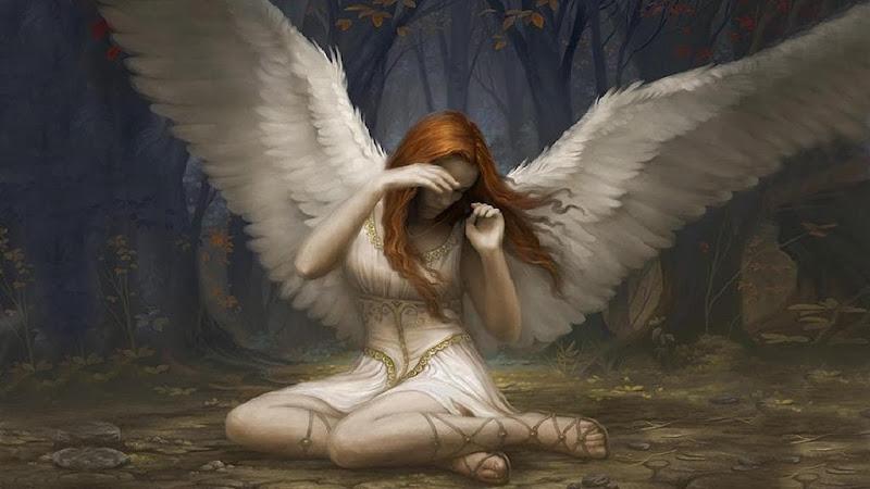 #315 La mirada del Ángel