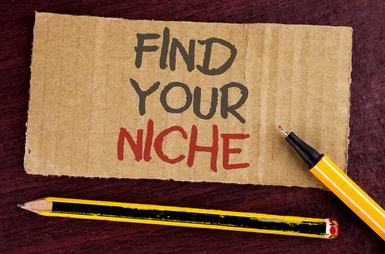 Finding and Deciding on your Niche