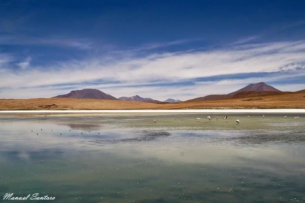 Reserva Nacional de Fauna Andina Eduardo Avaroa, Laguna Cañapa