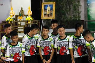 http://vnoticia.com.br/noticia/2955--javalis-selvagens-da-tailandia-visitam-templo-para-agradecer-recuperacao