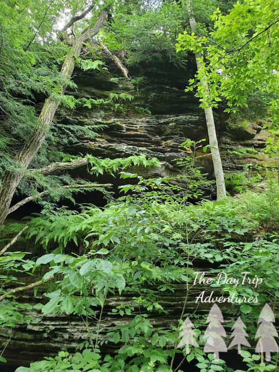 Sandstone Ledges and foliage at Blackhand Gorge in Heath, Ohio