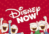 Disney Now Roku Channel
