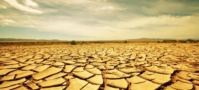 El suelo en el desierto