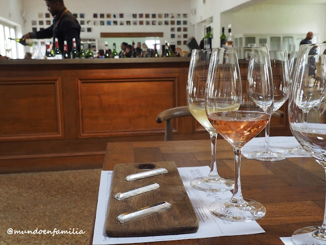 Spier wine tasting