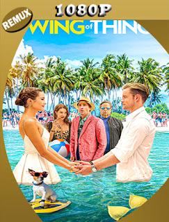 The Swing of Things (2020) REMUX [1080p] Latino [GoogleDrive] SilvestreHD