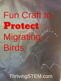 Birds can be harmed year when they fly into your windows.  This fun craft is an economical, and effective solution.