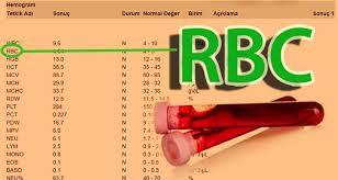 RBC Nedir?