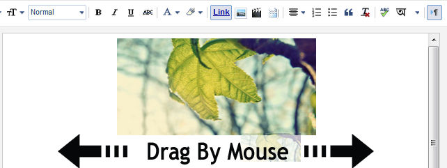 drag by mouse