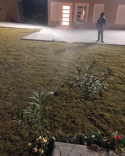 شركة تشجير الحدائق بالقصيم وتنسيق الحدائق المنزلية بالقصيم تركيب العشب الصناعي والطبيعي في بريدة وعنيزة