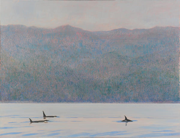 """""""Orcas, Blackfish Sound""""  by Darren Rees"""