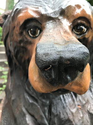 Close up of a carved wooden bear.