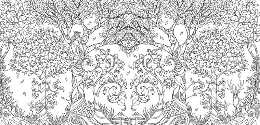 a delightful coloring book for adults