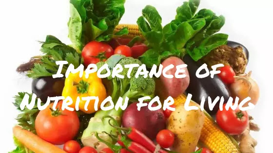 Why and what you need to know about nutrition for living