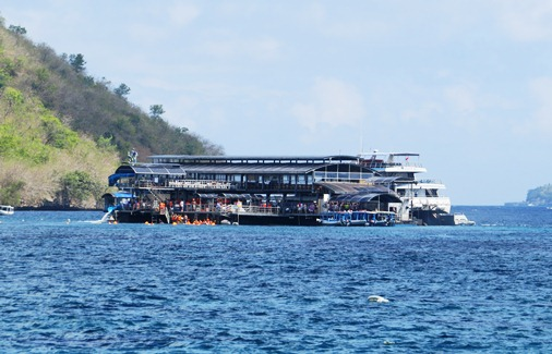 spectacular landscape too rich ecosystems BaliBeaches: Explore Nusa Penida dive spots Bali & the Holy Temple